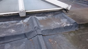 Flat roof - Kenilworth (10)
